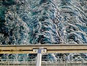 Диря в морето 2021 — резултати